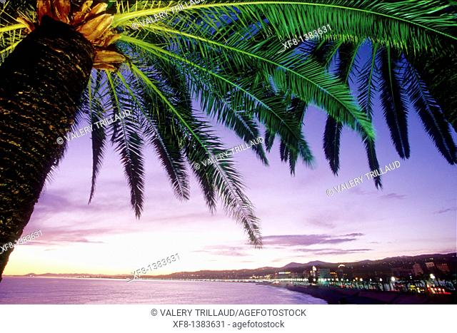 Sunset in Nice, Alpes-Maritimes, Provence-Alpes-Côte d'Azur, France