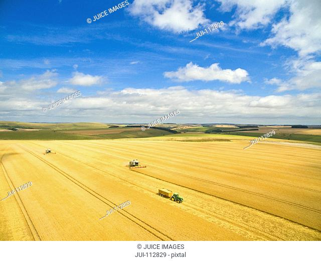 Scenic aerial landscape view of combine harvester and tractor trailer in sunny golden barley field in rural countryside