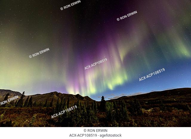Northern Lights or Aurora Borealis over Tombstone Territorial Park, Yukon, Canada