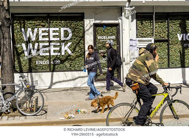Two storefronts in the Lower East Side neighborhood of New York are filled with ''faux'' marijuana as a promotion for the so-called ''Weed Week'' programming on...