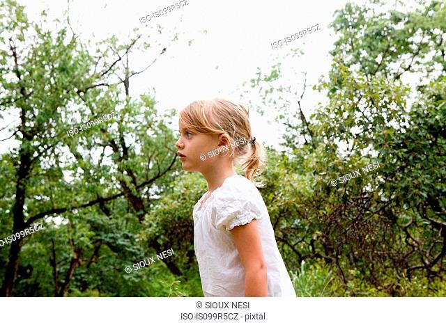 Little girl amongst trees