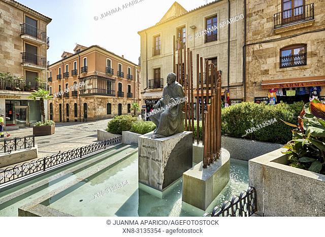 Monumento al Maestro Salinas, Salamanca City, Spain, Europe