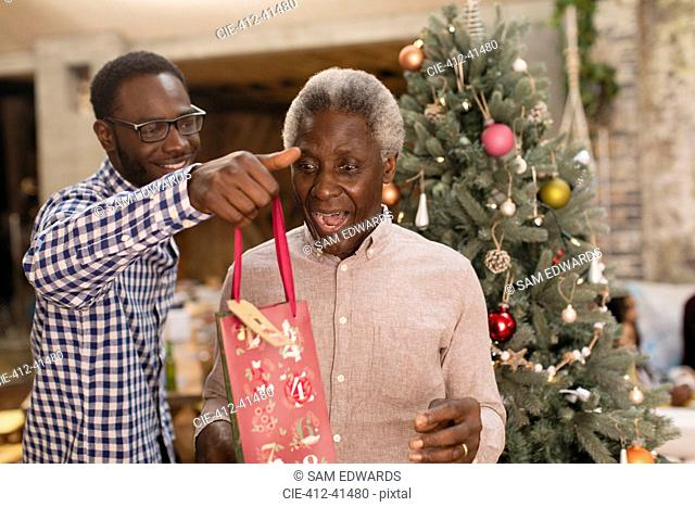 Grandson surprising grandfather with Christmas gift