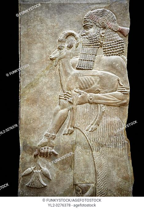 Stone relief sculptured panel of a man holding an Ibex and a poppy flower. Facade L. Inv AO 19872 from Dur Sharrukin the palace of Assyrian king Sargon II at...