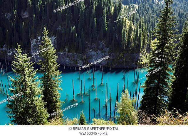 Turquoise Lake Kaindy from above with Asian Spruce trees Kazakhstan