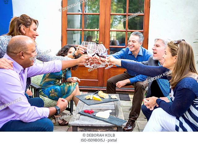 Six mature adults friends making wine toast at garden party on patio