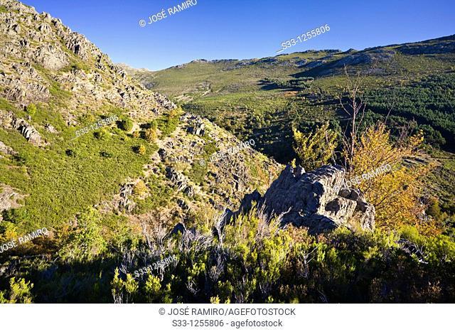 The Torrecilla hill in Sierra Norte Guadalajara Castilla la Mancha Spain