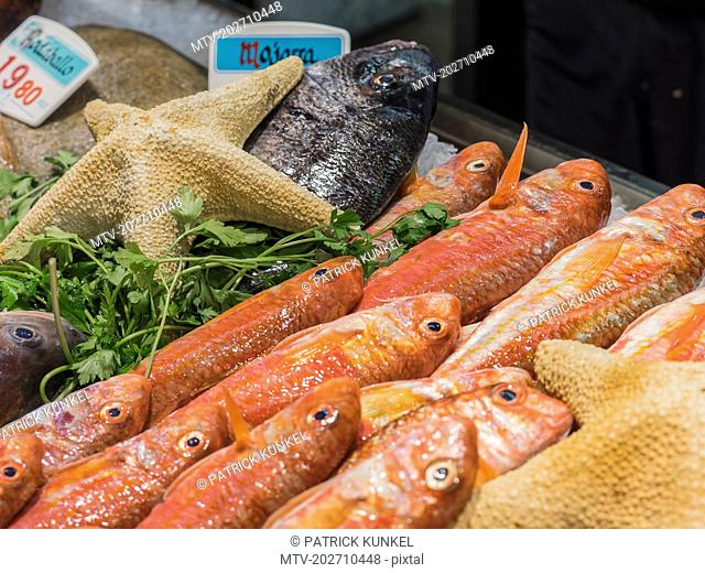 Fresh seafood for sale at fish market