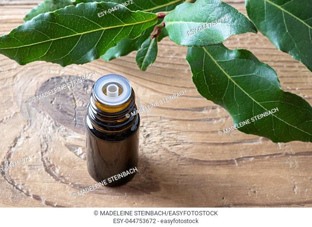 A dark bottle of essential oil with fresh bay leaves