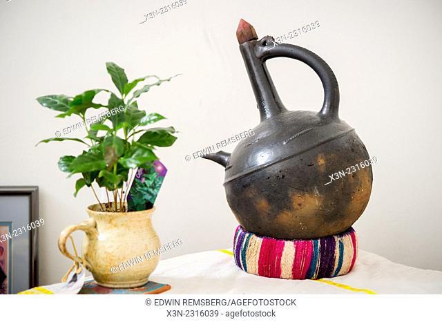 Traditional Ethiopian Jebena coffee pot next to plant
