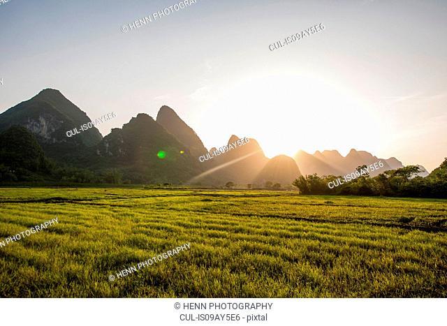 Rice field and Karst Mountains, Guangxi, China