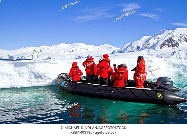 Lindblad Expeditions guests with a lone adult emperor penguin Aptenodytes forsteri on sea ice in the Gullet between Adelaide Island and the Antarctic Peninsula