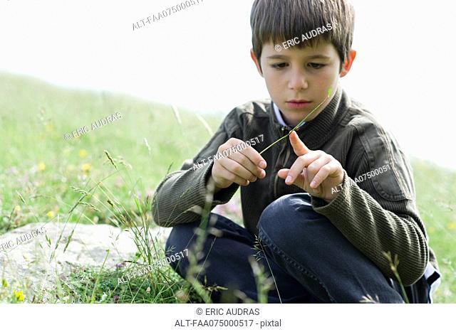 Boy looking at ladybug crawling on blade of grass