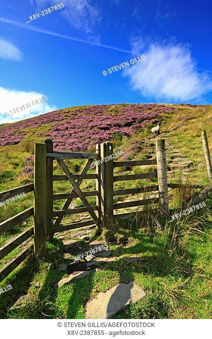 Gate on Pennine Way, Torside Clough, Torside, Bleaklow, Derbyshire, Peak District National Park, England, UK