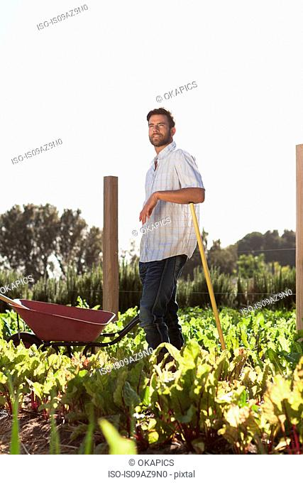 Portrait of mature man standing in vegetable patch