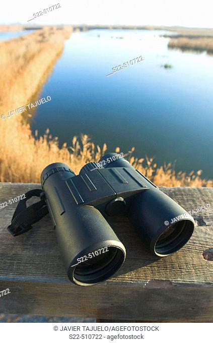 Binoculars. Marjal del Moro, Valencia province, Comunidad Valenciana, Spain