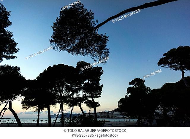 Santa Ponsa beach, Calvia, Mallorca, Balearic Islands, Spain
