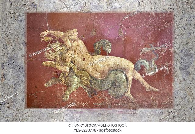 Detail of the Roman fresco wall painting of a Nereid lying on a sea panther from the triclinium, a formal dining room, of the Villa Arianna (Adriana)