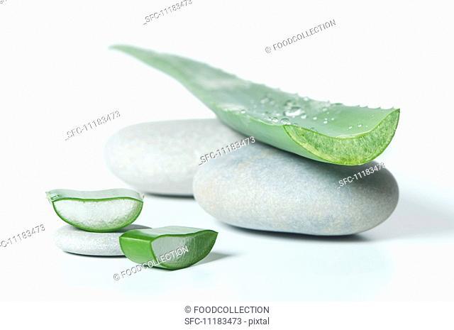 An aloe vera leaf on pebbles