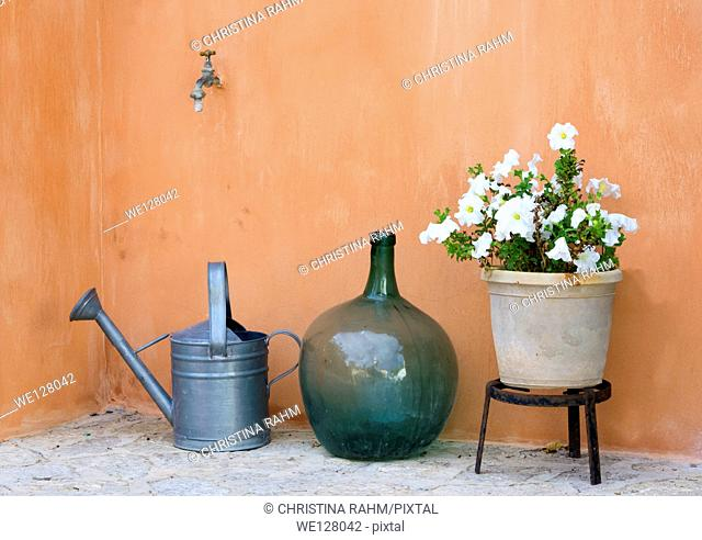 Garden still life with watering can, round vase and pot with white petunias
