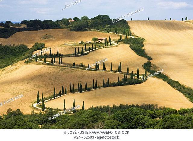Landscape near town of Pienza, Tuscany, Italy