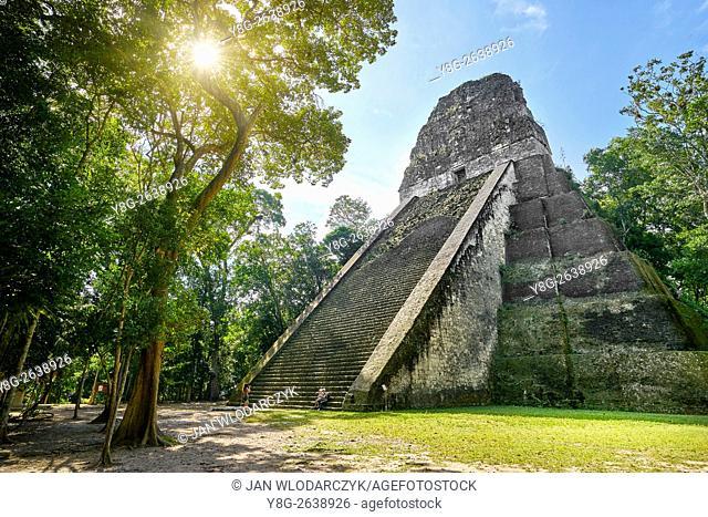 Temple V, Ancient Maya Ruins, Tikal National Park, Yucatan, Guatemala