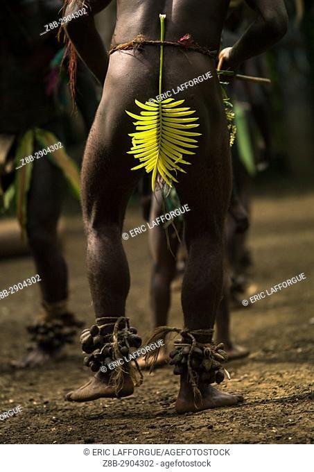 Tribesman with a yellow leaf dancing the palm tree dance of the Small Nambas tribe, Malekula island, Gortiengser, Vanuatu
