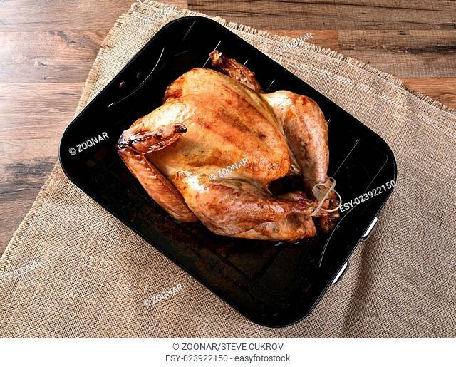 Cooked Turkey in Roasting Pan