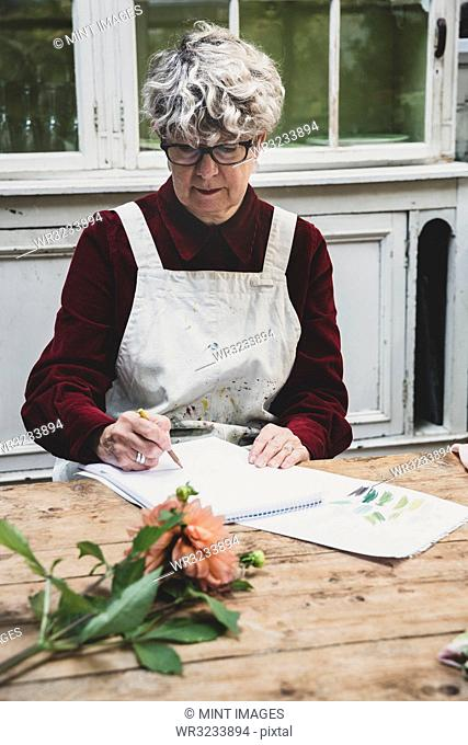 Senior woman wearing glasses, red dress and white apron sitting at table, working on pencil drawing of orange Dahlia