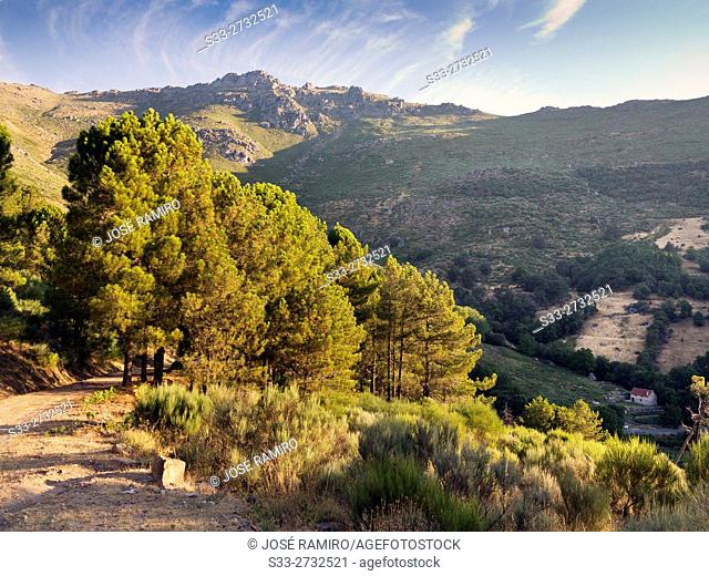 Peluca cliff in the Sierra de Gredos from The Horcajo. Mijares. Avila. Castilla Leon. Spain. Europe