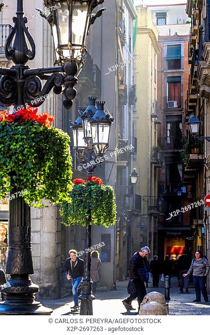 Carrer del Call street from Sant Jaume square, Barcelona, Catalonia, Spain
