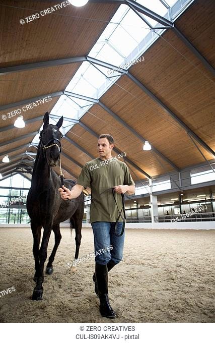 Male stablehand leading horse in indoor paddock