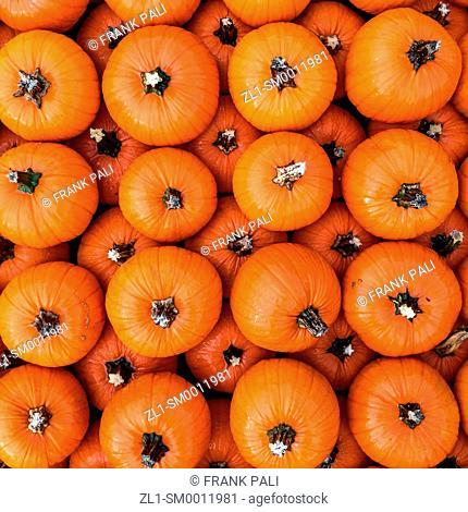Pumpkins piled up in a square