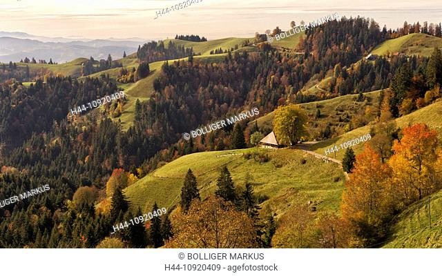 farm, farmhouse, Emmental, autumn, fall, autumn foliage, hilly landscape, Indian summer, canton Bern, landscape, pasture, Lüderenalp, Switzerland, pre-Alps
