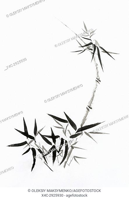 bamboo stalk with young leaves, beautiful Japanese Zen painting Sumi-e, oriental black ink on rice paper illustration fine artwork