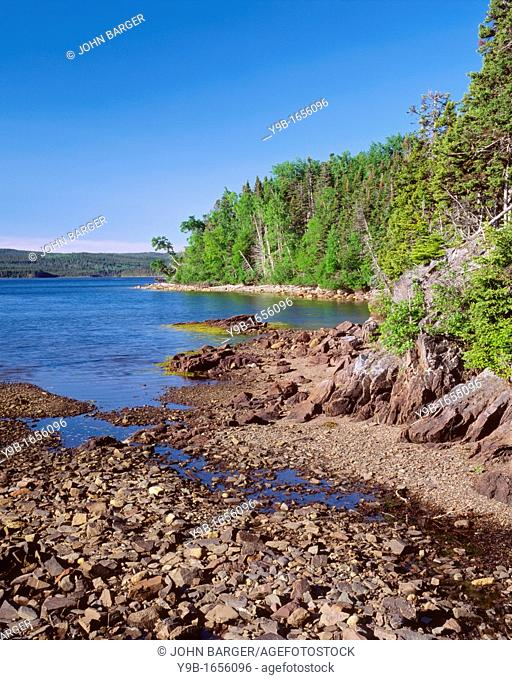 Deep, blue waters of Newman Sound and surrounding mixed conifer hardwood forest, Terra Nova National Park, Newfoundland, Canada