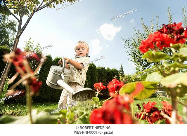Germany, Bavaria, Boy watering garden flowers
