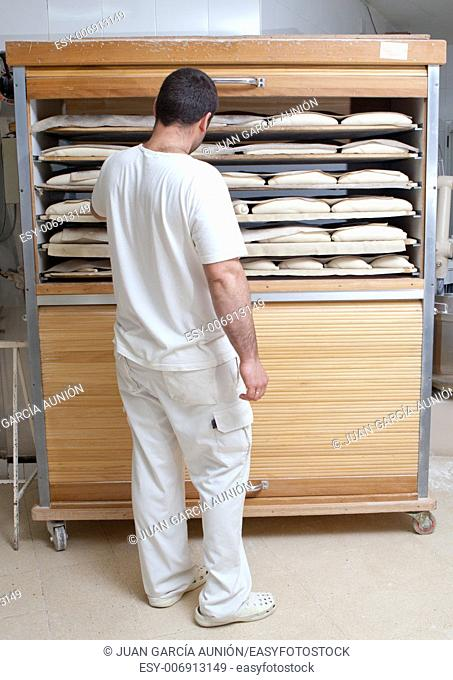 Baker checking pieces of bread in the fermentation wooden cabinet. Manufacturing process of spanish bread