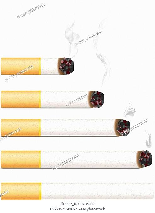 Set of five different realistic cigarettes with smoke isolated on white
