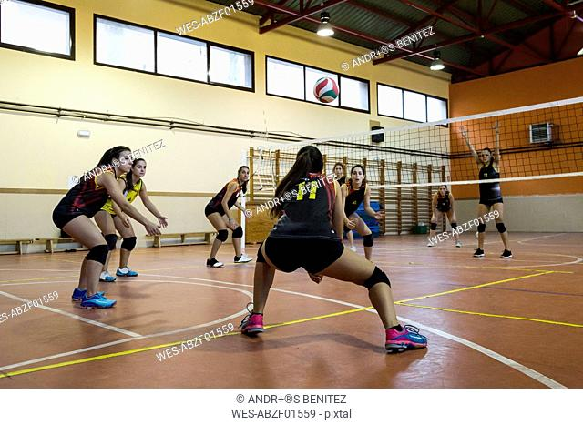 Volleyball player digging the ball during a volleyball match