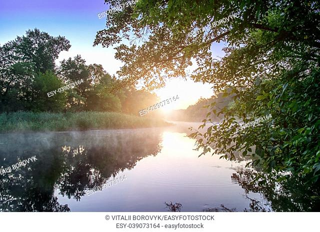 Morning fog on a calm river, Seversky Donets river, Ukraine