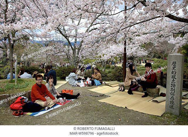 tourists doing picnic during cherry blossom season. Maruyama-koen park, Kyoto, Japan