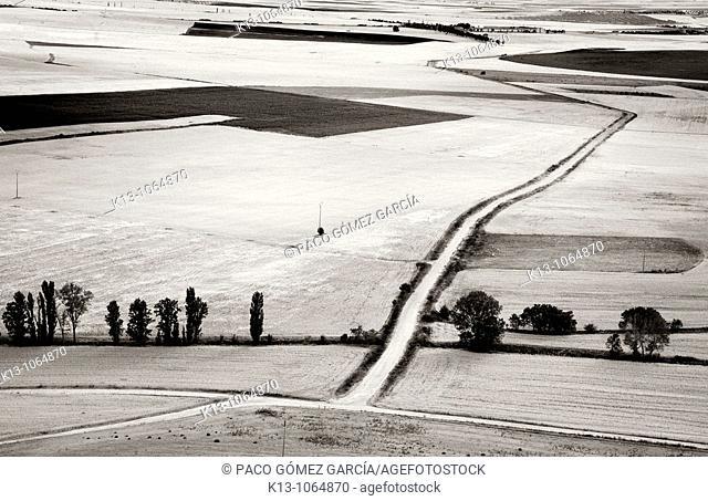 Country landscape, Urueña, Valladolid province, Castilla-Leon, Spain