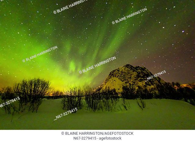 Northern Lights (Aurora Borealis), Gimsoya Island, Lofoten Islands, Arctic, Northern Norway