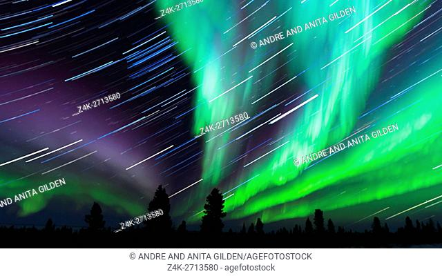 Nightsky lit up with aurora borealis, northern lights, and startrails, wapusk national park, Manitoba, Canada