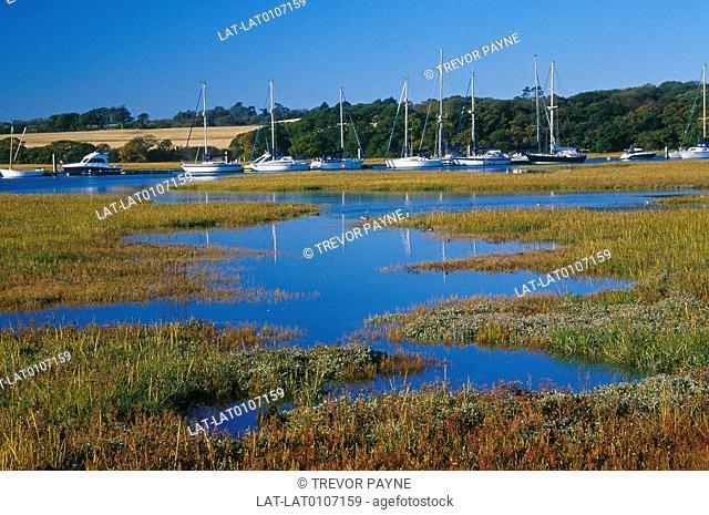 Estuary,coast. Sea shore. Flat marsh land. Blue water of sea. Water plants. Yarmouth. Boats moored. Village. Headland