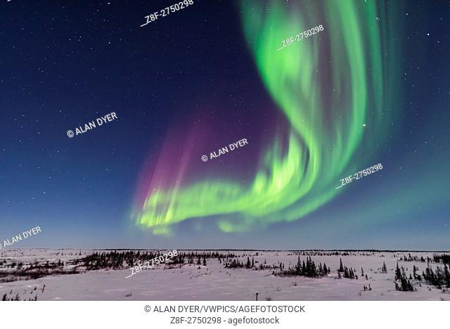 A superb display of aurora borealis seen on March 14, 2016 when it reached Level 5 storm levels. Here it begins in the evening twilight and in the light of the...