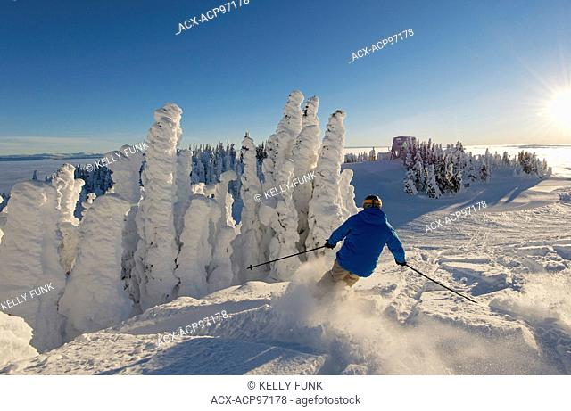 A skier among snow ghosts cuts fresh tracks in the powder in a beautiful environment at sunrise at the top of Sun Peaks Resort, Thompson Okangan region