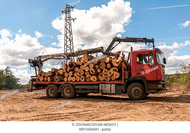 Loading of felled timber in a truck with crane