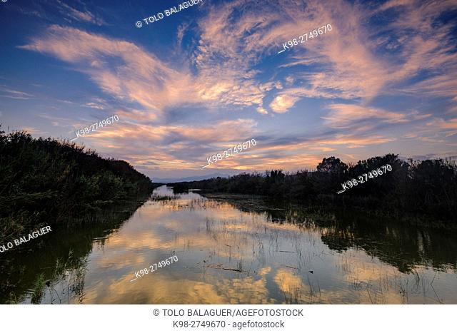 canal des Sol, Parque natural s'Albufera de Mallorca, términos municipales de Muro y sa Pobla. Majorca, Balearic Islands, Spain